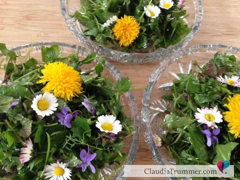 Wildkräuter-Salat-ClaudiaTrummer