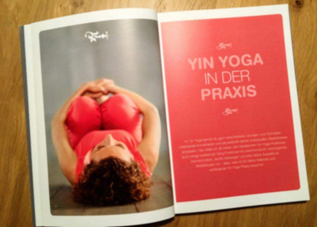 yin-yoga-in-der-praxis-von-stefanie-arend-rezensiert-von-claudia-trummer-yoga