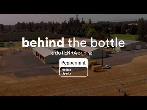 Peppermint Essential Oil | doTERRA Behind the Bottle (Translated Subtitles)