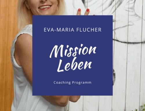 Mission Leben – Onlinekurs